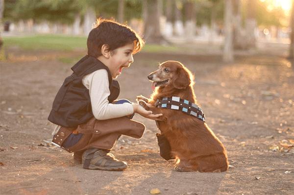 giảm căng thẳng bằng việc nuôi thú cưng