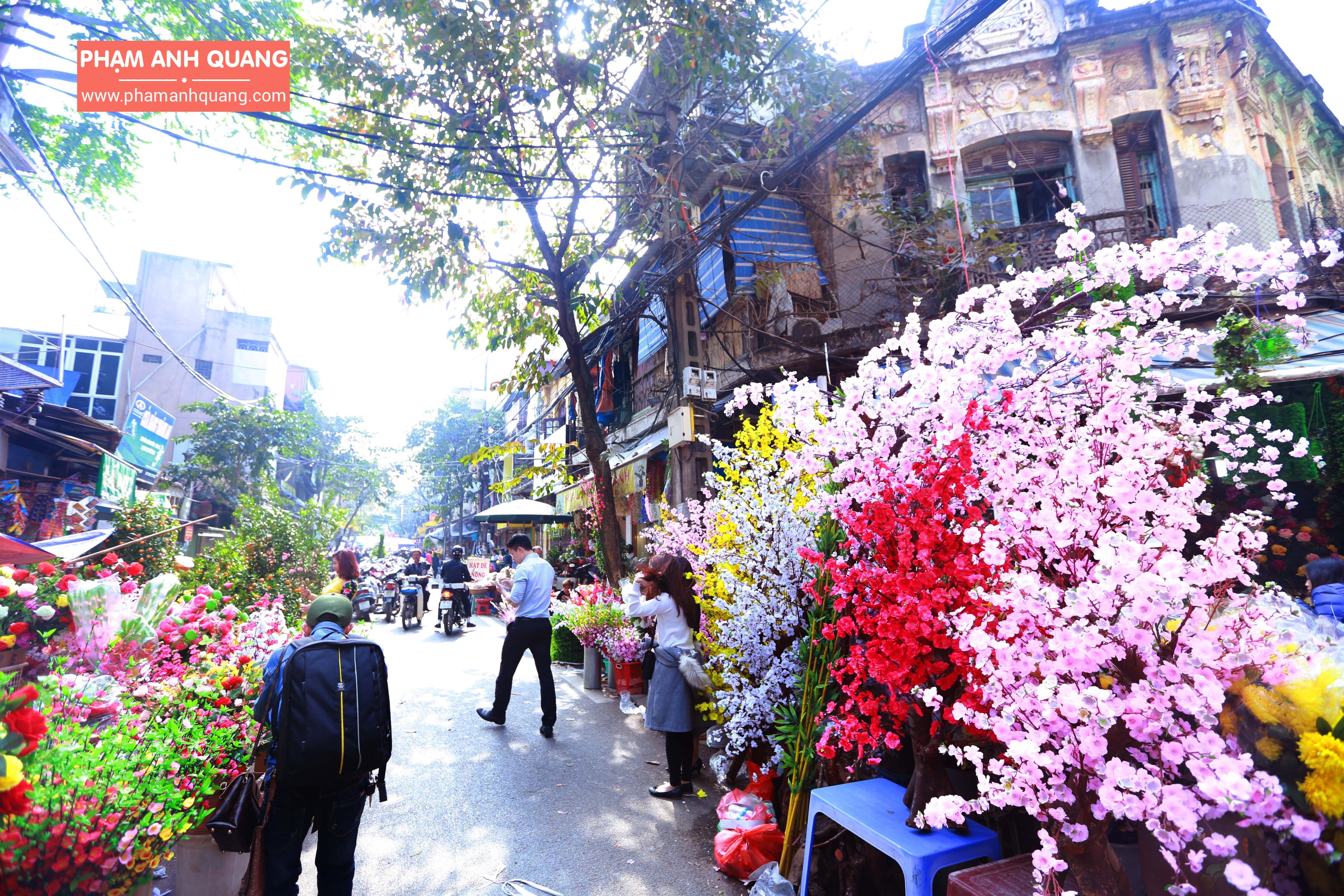 Những chợ hoa đẹp ở Hà Nội vào dịp tết Nguyên Đán