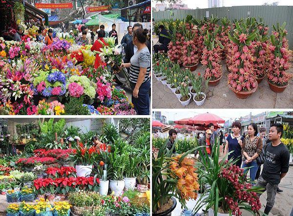 Chợ hoa Lạc Long Quân