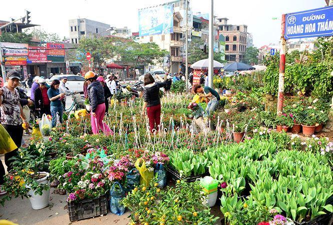 Chợ hoa Hoàng Hoa Thám